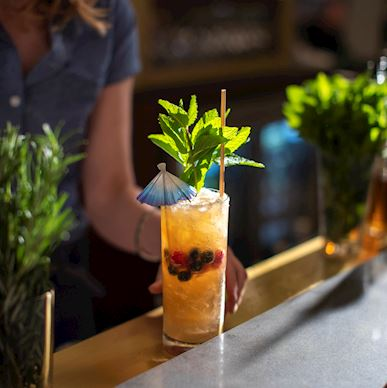 Reviver cocktail on counter served by a female bartender